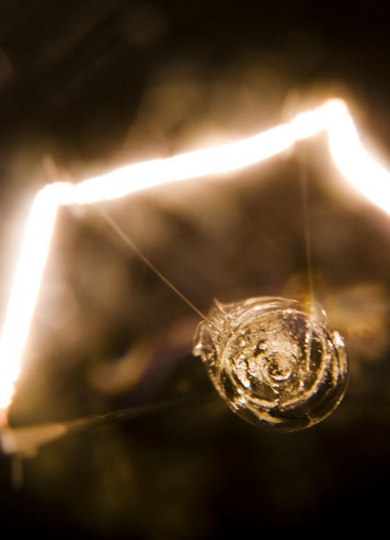 Light Bulb Macro Free Stock Photo By 2happy On