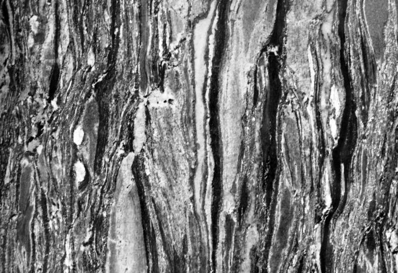 Black And White Marble Texture Free Stock Photo By Ian L