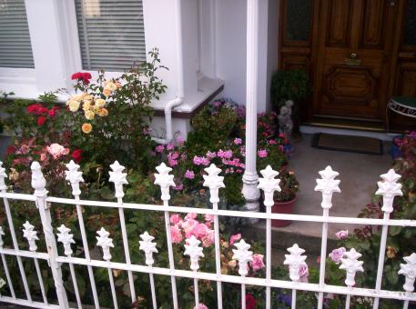 Free Stock Photo of Railing, twentieth, century, iron, roses