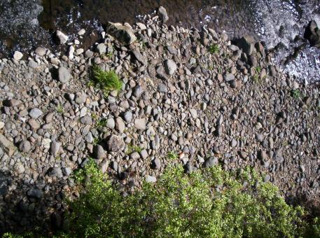 Free Stock Photo of River Bed Textures