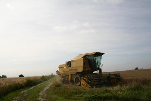 Free Stock Photo of Harvesting