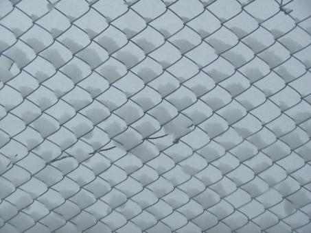Free Stock Photo of Snow on wire fence