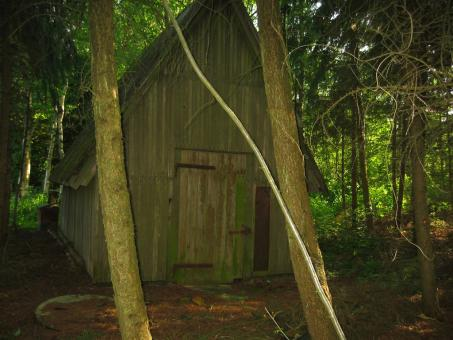 Free Stock Photo of Shed in the woods