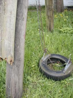 Free Stock Photo of Tire swing