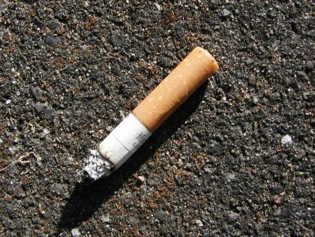 Free Stock Photo of Cigarette Bud on Street