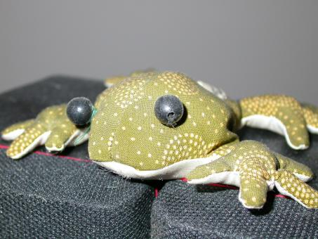 Free Stock Photo of Stuffed frog