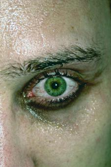 Free Stock Photo of Green eye