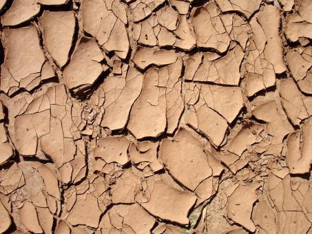 Free Stock Photo of Dry and cracked surface