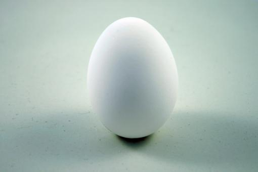 Free Stock Photo of Egg