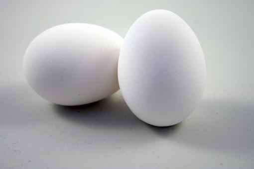 Free Stock Photo of Two eggs