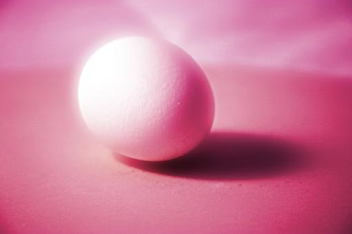 Free Stock Photo of Pink Egg