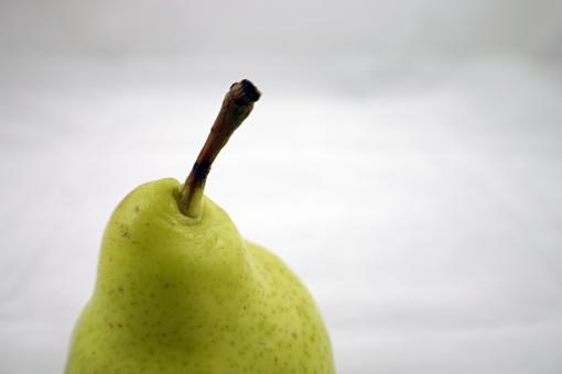 Free Stock Photo of Pear