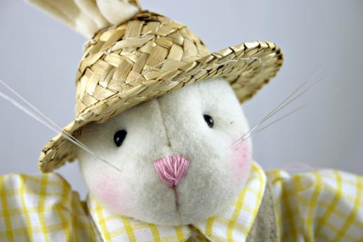 Free Stock Photo of Easter rabbit with a hat
