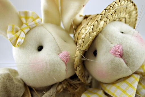 Free Stock Photo of Easter rabbits closeup