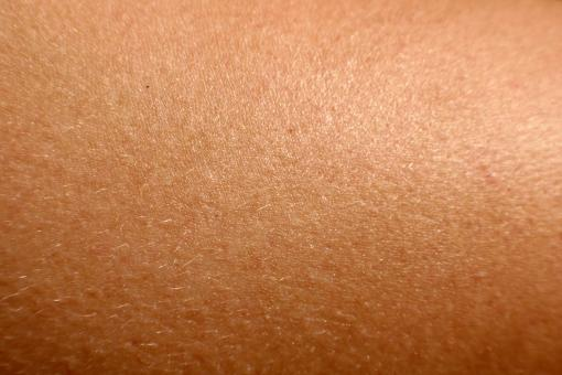 Free Stock Photo of Human skin