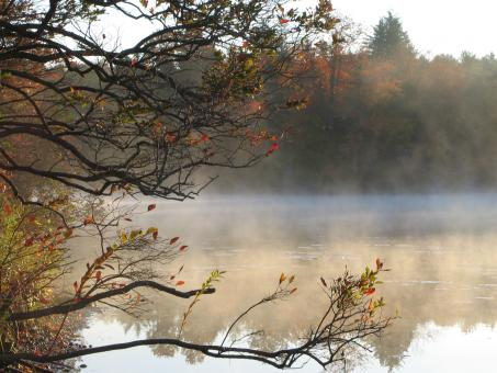 Free Stock Photo of Misty Morning Lake