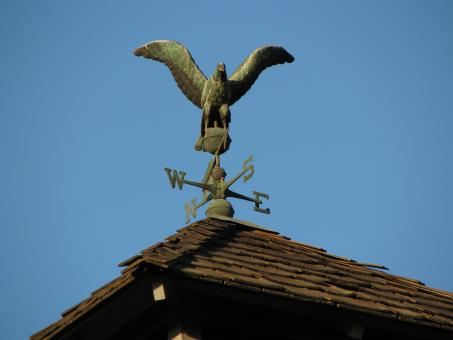 Free Stock Photo of Weather Vane Eagle