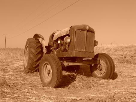 Free Stock Photo of Old Fordson Laid to Rest