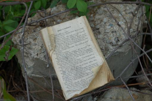Free Stock Photo of Abandoned Book