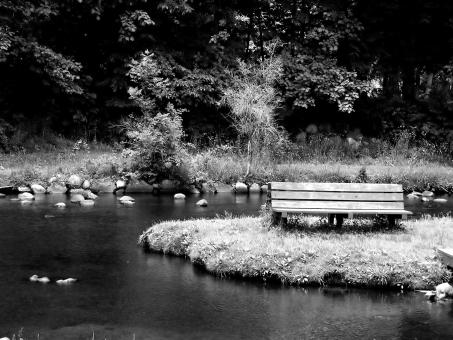 Free Stock Photo of Empty Park Bench