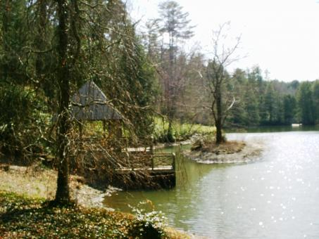 Free Stock Photo of Biltmore estate bass pond