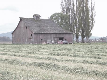Free Stock Photo of Old Barn