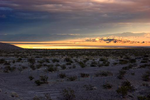 Free Stock Photo of Nevada Desert