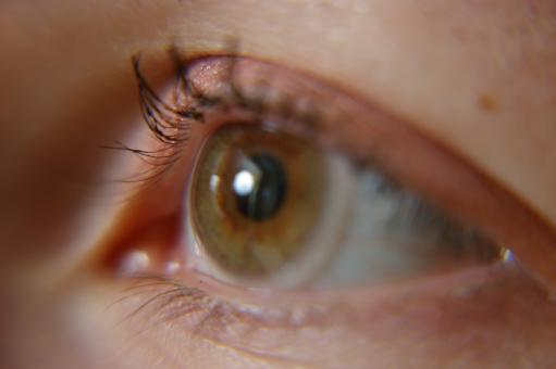 Free Stock Photo of Human eye