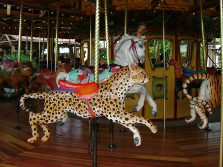 Free Stock Photo of Cougar Carousel