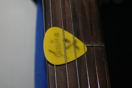 Free Stock Photo of Yellow guitar pick