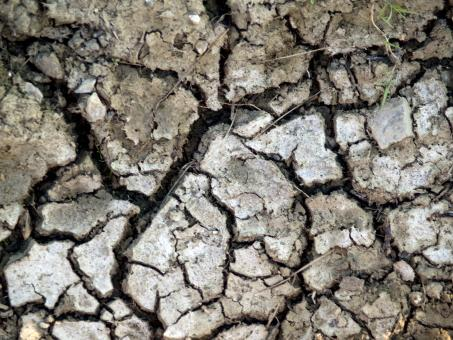 Free Stock Photo of Cracked dirt Texture