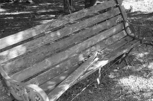 Free Stock Photo of Black & White Bench
