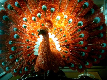 Free Stock Photo of Peacock Coral Statue behind glass