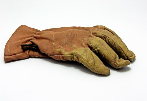 Free Stock Photo of Single glove