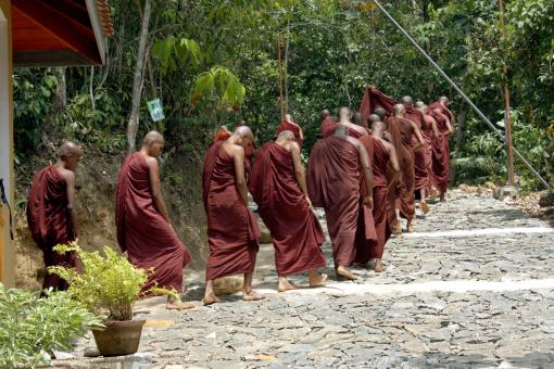 Free Stock Photo of Sri lanka Monks