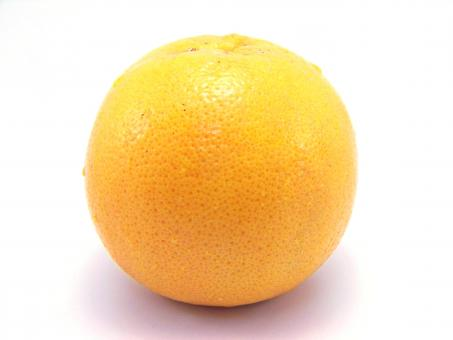 Free Stock Photo of Orange