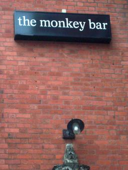 Free Stock Photo of The Monkey Bar