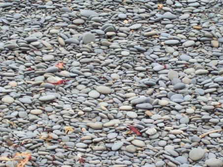 Free Stock Photo of Granite pebbles - beached and sorted
