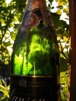 Free Stock Photo of Champagne bottle