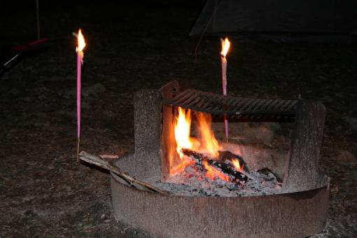 Free Stock Photo of Camp fire