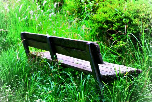 Free Stock Photo of Old wooden bench