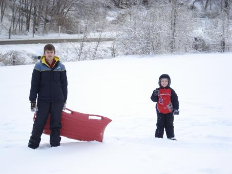 Free Stock Photo of Back Yard Sledding