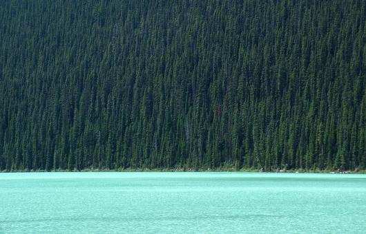 Free Stock Photo of Lake Louise
