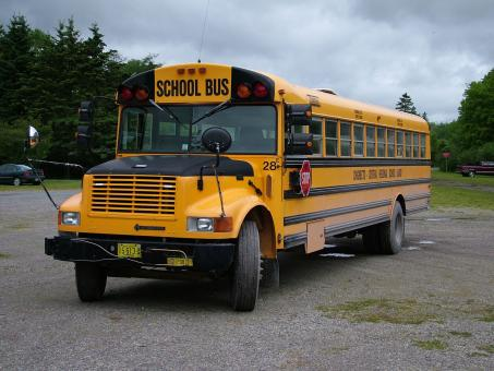 Free Stock Photo of School Bus