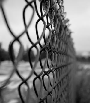 Free Stock Photo of Chainlink Fence