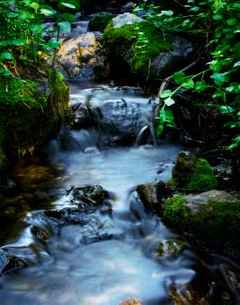 Free Stock Photo of Mountain Stream