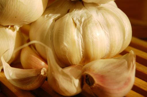 Free Stock Photo of Garlic