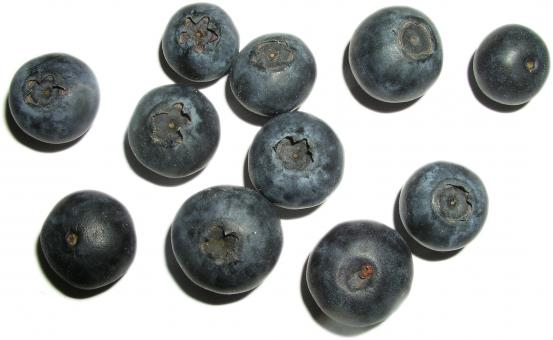 Free Stock Photo of Blueberries