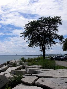 Free Stock Photo of Milwaukee Beachfront