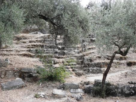 Free Stock Photo of Ancient amphitheater in Herakleia